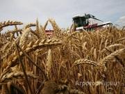 Объявление Аренда / Продажа 5000 га сельскохозяйственной земли. Собственность! в Алтайском крае