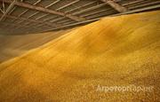 Объявление Ведем оптовую закупку пшеница класса 4 в Ростовской области