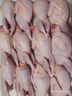 Объявление Мясо перепела в Республике Башкортостан