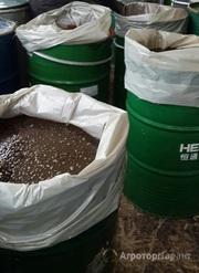 Объявление Патока свекловичная в бочках 300 кг в Алтайском крае