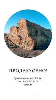 Продаю Продам сено в Алтайском крае