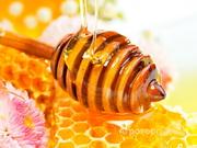 Объявление Мёд гречишный в Алтайском крае