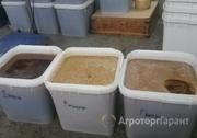 Объявление Продаю Алтайский мед высокого качества в Алтайском крае