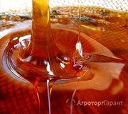 Объявление Продам Мёд и пчелопродукты с личной пасеки отличного качества  в Алтайском крае