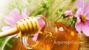 Объявление Мёд, медовая продукция. в Алтайском крае