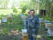 Объявление Мёд от производителя. Личная пасека в Алтайском крае
