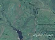 Объявление Продам 70 га земли сельхозназначения в Алтайском крае