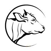 Объявление Головы говяжьи в Алтайском крае