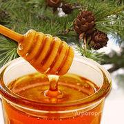 Объявление Мёд оптом в Алтайском крае