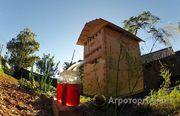 Объявление Меняю мёд на ульи в Кемеровской области