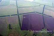 Объявление Узнать границы своего участка земли в Республике Татарстан