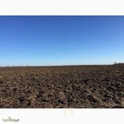 Объявление Продажа земель в Ставропольском крае