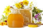 Объявление Продаю мёд в Алтайском крае