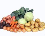 Объявление Овощи оптом от производителя в Новосибирской области