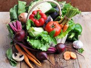 Объявление заключаем прямые договора на поставку овощей в Ульяновской области