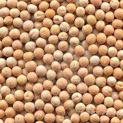 Объявление Закупаем продовольственный горох в больших объемах в Краснодарском крае