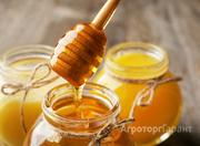 Объявление Продам мёд со своей пасеки в Ростовской области