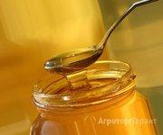 Объявление Продам мед гречишный 2019г. в Алтайском крае