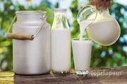 Объявление Молочная продукция в Тверской области