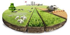 Объявление Продам земли сельскохозяйственного назначения в Алтайском крае