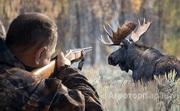 Объявление Продается Охотхозяйство в Ярославской области 270 км. от Москвы в Москве и Московской области