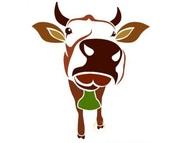 Объявление Две коровы в Республике Башкортостан