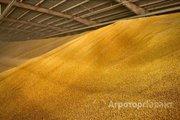 Объявление Кукуруза высокой степени очистки - 9 000 руб. Рязанская область в Рязанской области