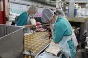 Объявление Продам стабильный бизнес: пищевая фабрика в Тульской области